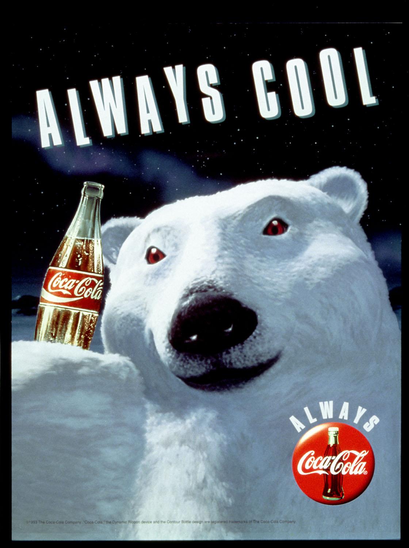 polar bear thesis